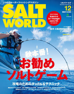 SALT WORLD 2016年12月號 Vol.121 【日文版】